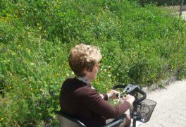 CONSEJOS de Seguridad para la conducción de MOTOS ELECTRICAS para personas mayores, minusválidos y discapacitados